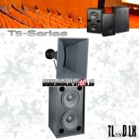 Electro-Voice TS550D-LX