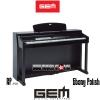 GEM RP-910 SWP