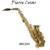 Pierre Cesar JBAS-200L