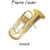 Pierre Cesar M2106CB