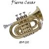 Pierre Cesar JBMT-500