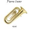 Pierre Cesar M2110
